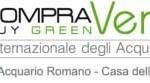 forum compre verde