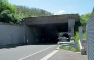 Progettazione ecologica delle infrastrutture di trasporto e miglioramento della sicurezza stradale