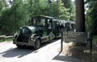 Sicurezza, comfort e affidabilità automatiche: i trenini Dotto scelgono le trasmissioni Allison